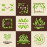 Eco organisk etikettuppsättning Arkivbild
