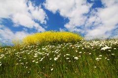 Eco-paradis Photographie stock libre de droits