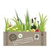 Eco parcel. Parcel with green grass, flowers, and fruits vector illustration
