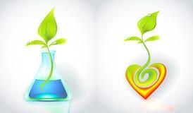 Eco-pictogram met groene spruit Stock Afbeeldingen