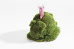 Eco-piggy bank with 10 euro note, overgrown with grass Royalty Free Stock Photography