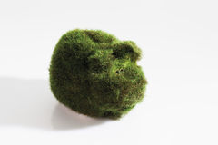 Eco-piggy bank with grass on white background Royalty Free Stock Images