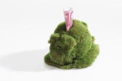 Eco-Piggy bank met euro die nota 10, met gras wordt overwoekerd Royalty-vrije Stock Fotografie