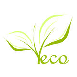 Eco plant. Eco concept - green plant illustration Stock Image