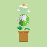 Eco pojęcia ziemia w roślina kształcie Zdjęcie Stock