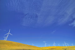 Eco power. Wind mill is the one of the  world eco power plant Stock Photo