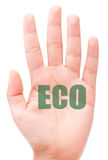 Eco Royalty Free Stock Images