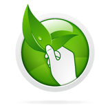 Eco pro nature symbol. Green eco pro nature symbol, hand holding leaves Stock Image