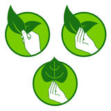 Eco pro nature symbol. Growers hand holds green leaf. Pro nature symbol Royalty Free Stock Photos