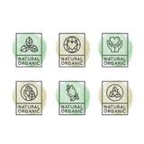 Eco Product, Bio Ingredient Label Badge Stock Images