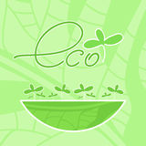 Eco product Stock Photography