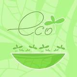 Eco produkt Arkivbild