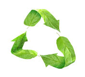 Eco recycling symbol of green leaves Stock Images