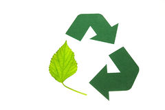 Eco Recycling. Recycling symbol made ​​of green paper and leaves royalty free stock image
