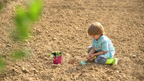 Eco Resort Activities. Eco farm worker. Happy little farmer planting on field. Toddler age. Farming and agriculture. Cultivation. Children summer activities stock footage