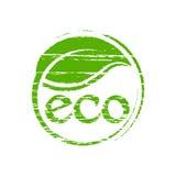 Eco Responsible Plant Illustration Stock Image