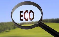 Eco środowiskowy Obrazy Royalty Free