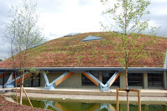 Eco roof 3 Stock Image