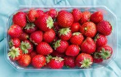 Eco rosnąć truskawki w plastikowym koszu Zdjęcie Stock