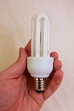 Eco saving bulb. For home use Stock Images