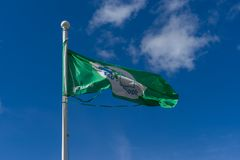 Eco-Schulflaggenfliegen im Wind Lizenzfreie Stockfotografie