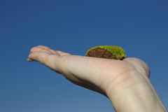 Eco Sense. Conceptual image showing a female hand holding a piece of mossy earth against deep blue sky Royalty Free Stock Photography