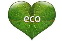 Eco serce Zdjęcia Royalty Free