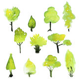 Eco set of watercolor green trees. Vector spring tree collection Stock Photo