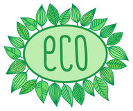 Eco sign in oval frame with leaves around, vector illustration vector illustration