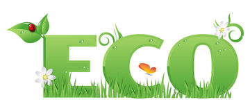 Eco sign/text. /Eco text decorated with,flowers,grass,water drops and ladybug Royalty Free Stock Photo