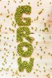 Eco-Slogankonzept: fassen Sie GROW gemacht von grünen Mungobohnen auf hölzernem ab lizenzfreie stockfotos