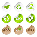 Eco Stickers. Vector Royalty Free Stock Photo