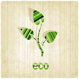 Eco striped old background Royalty Free Stock Image
