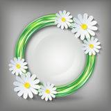 Eco stylish background with 3d chamomile. Eco stylish background with circle and 3d flower chamomile. Stylish icon - element of design. Floral decorative frame Stock Images