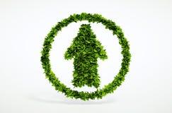 Eco sull'icona della freccia Fotografia Stock Libera da Diritti