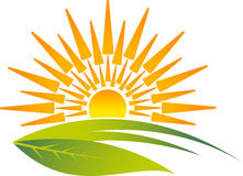 Eco sunrise logo Stock Photography
