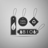 Eco tags icon. Royalty Free Stock Photography
