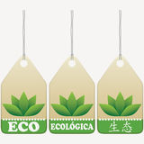 Eco tags signs. English, Spanish, Chinese inscribed Royalty Free Stock Photography