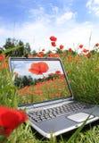 Eco Technologie Stockbilder