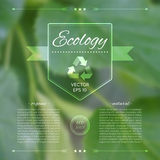 Eco template. Blurred background. Royalty Free Stock Images