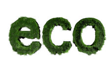 Eco Text Lizenzfreies Stockbild