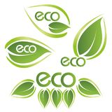 ECO text on a concept in the ecological colors. Vector logo templates and elements related to ecology, environment, nature Royalty Free Stock Photos