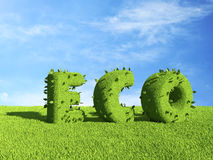 ECO text  on grass field. Ecology 3D. ECO text  on grass field. Ecology concept 3D Stock Image