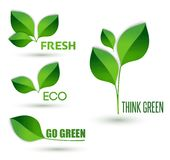 Eco text with leaves. Ecology concept. Think green. Vector Eco text with leaves. Ecology concept. Think green, go green and fresh Stock Photos