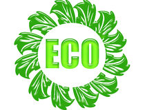 Eco. Text written in the center with leaves all around it Royalty Free Stock Image