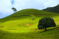 Eco Tourism. Eco-tourism. Beautiful hills landscape with hiking path royalty free stock photography