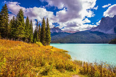 The eco-tourism. The concept of eco-tourism. Yoho National Park in Canada. Sunny day in autumn. Mountain Emerald lake in the wooded mountains stock photo