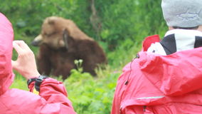 Eco-tourism stock footage