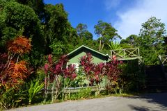 Eco tourism homestay - cottage beside jungle. Unique home stay - A photograph showing a little antique rustic style cottage in hard timber wood, surrounded by Stock Images