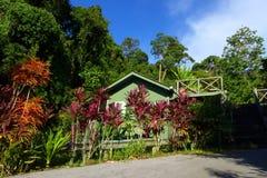 Eco Tourismusausgangsstütze - Häuschen neben Dschungel Stockbilder